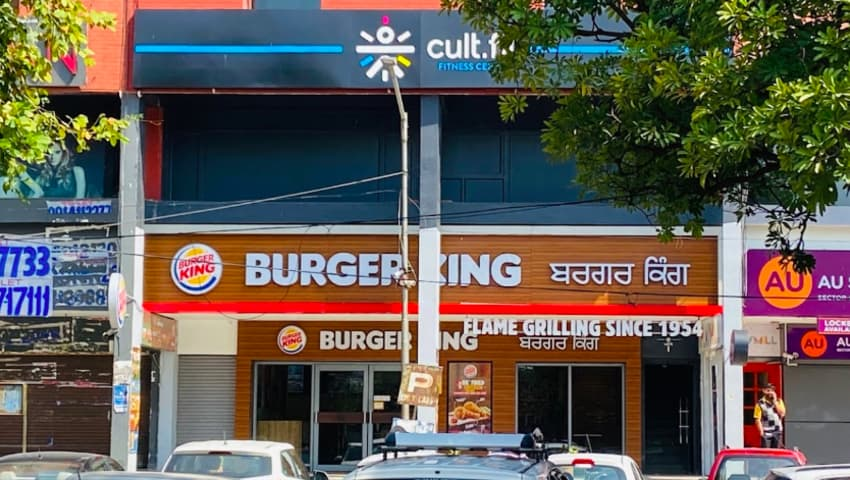 Cult Sector 8 Chandigarh